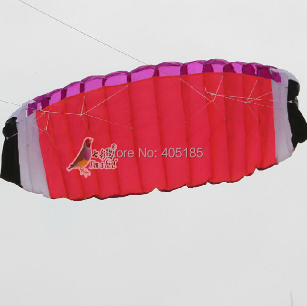 Free Shipping Outdoor Sports High Quality 2m Dual Line Stunt Parafoil Power Software Kite 100% Original Factory(China (Mainland))