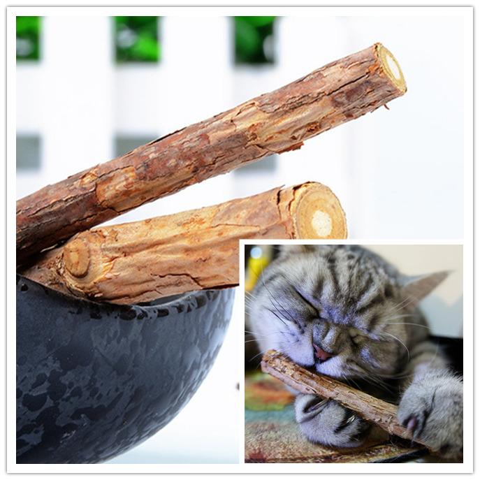 Тематические товары о котах из Китая