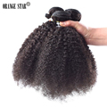 2PCS Brazilian Afro Kinky Curly Hair Weave 7A 10 30 Virgin Curly Hair Weft Tissage Afro