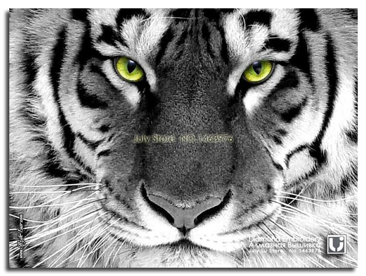 Большой тигр глава Diy картина
