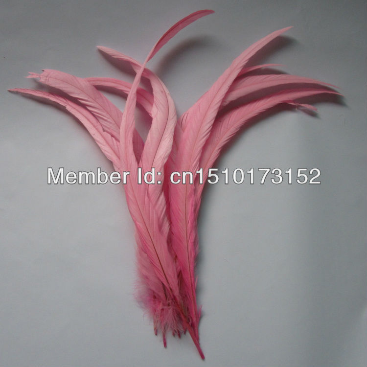 Free Shpping 10s 14-16''/35-40cm Pink Dyed Loose Rooster Tail plume feathers Sale GJ2-3 - TiTi Feather Market store