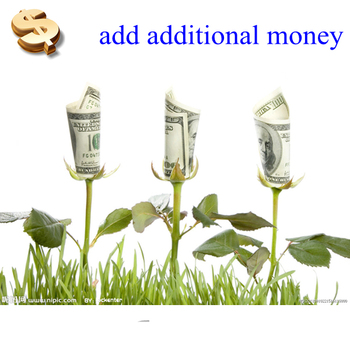 The Link for adding additional money
