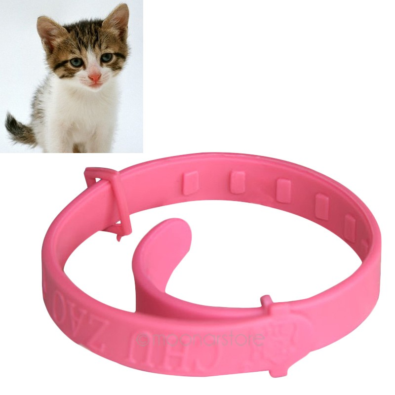 2016 New Hot Adjustable Practical Pet Protection Neck Collar Flea Tick Mite Louse Kitty Collar only for Cats(China (Mainland))