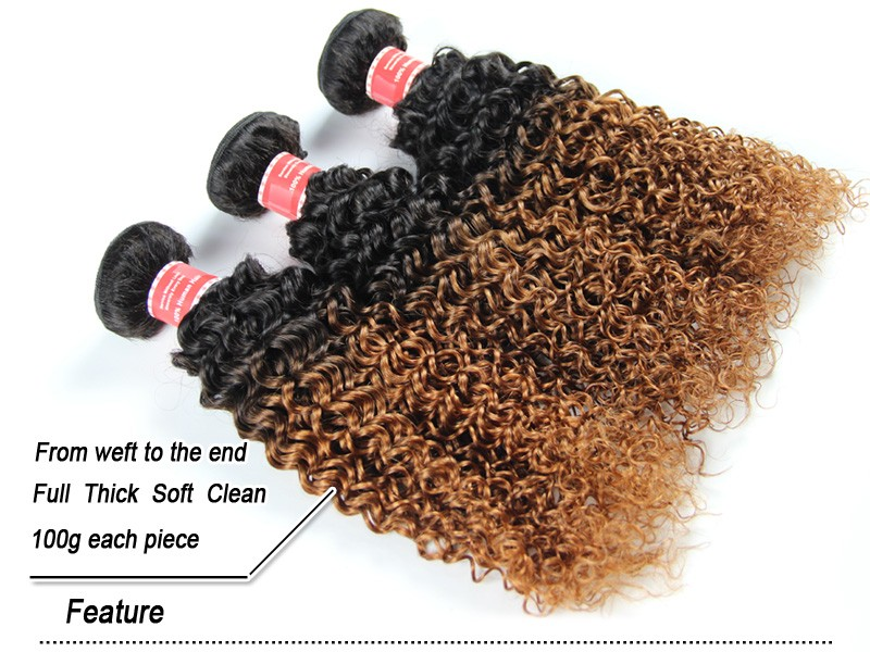 Curly Ombre Brazilian Hair With Closure 4 Bundles Brazilian Kinky Curly Virgin Hair With Closure 1b 30 Brazilian Virgin Hair 100