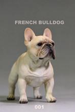 """1/6 escala creme/marrom cor francês bulldog simulação cão filhote de cachorro animal estimação brinquedo resina para 12 """"figura ação cena brinquedo(China)"""