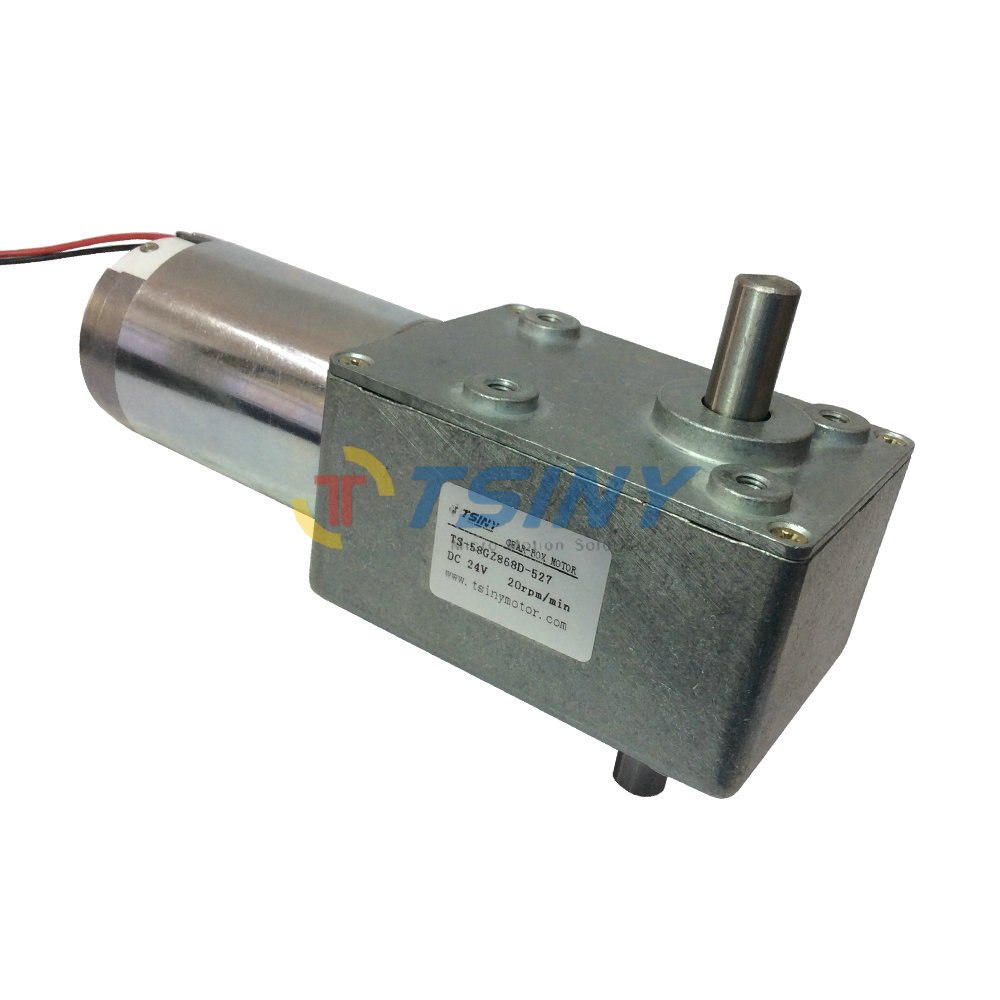 24v 20rpm dc worm gear motors brush dc motor double shaft