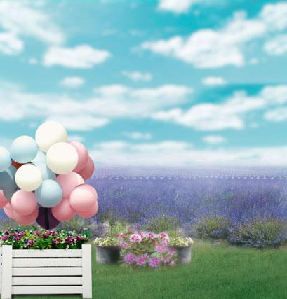 10*20feet(300*600CM) backdrops photography Balloon flower pots sky photo studio backgrounds<br><br>Aliexpress