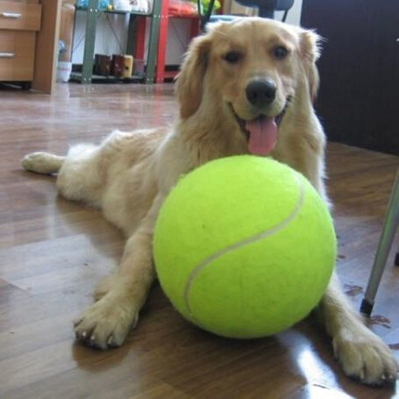 Large Dog Toys Balls : Cm large dog ball for pet chew toy puppy tennis