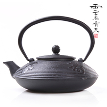 Chinese style tea pot, good luck and long life tea pot,cast iron tea pot,kung fu tea pot,coating th-7,free shipping