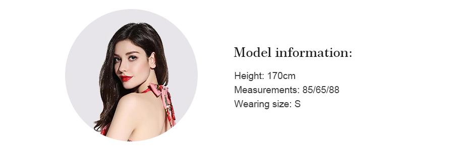model information(1)