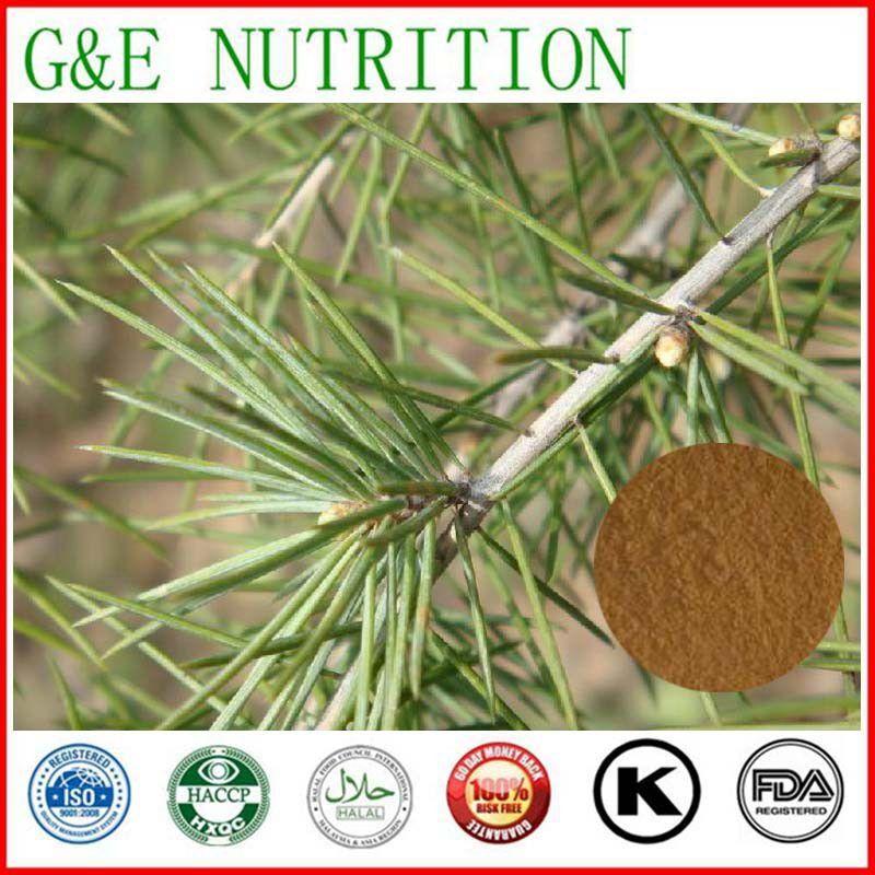 Здесь можно купить  Factory Supply Pine needle P.E./Pine Needle Powder/Pine Bark Extracts  10:1 400g  Красота и здоровье