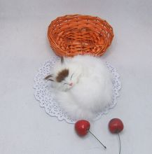 10 pieces small cute simulation sleeping cat toys polytene & fur white cat toys in a small baskat gift about 10cm