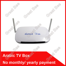 2016 Remote Control Free, Arabic IPTV Box, Over 400 IPTV Arabic Channel TV Box Free Shipping Free lifetime(China (Mainland))