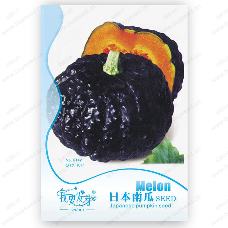 Original Pack 10 Seeds / Pack,Japanese pumpkin seeds seeds,Purple Pumpkin,Balcony vegetable plants, potted Pumpkin seeds(China (Mainland))