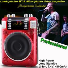 100W Mini Altavoz Enceinte Portable font b Speaker b font FM Radio MP3 Reverb Effect Subwoofer