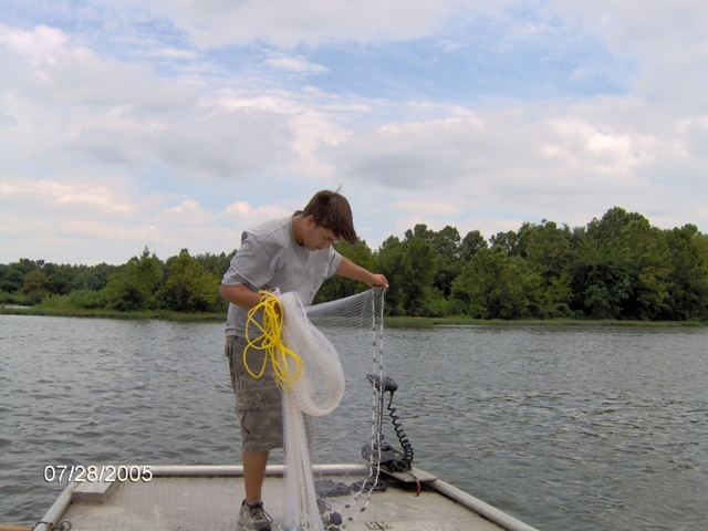 America cast nets as 130 the american style of cast net for Throw nets for fishing