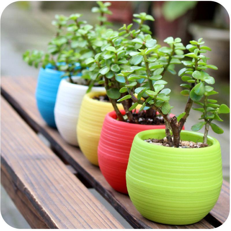 Round Mini Colourful Room Home Pots Office 7cm Cute Plastic Planter Flower Decor Tools Plant Garden(China (Mainland))