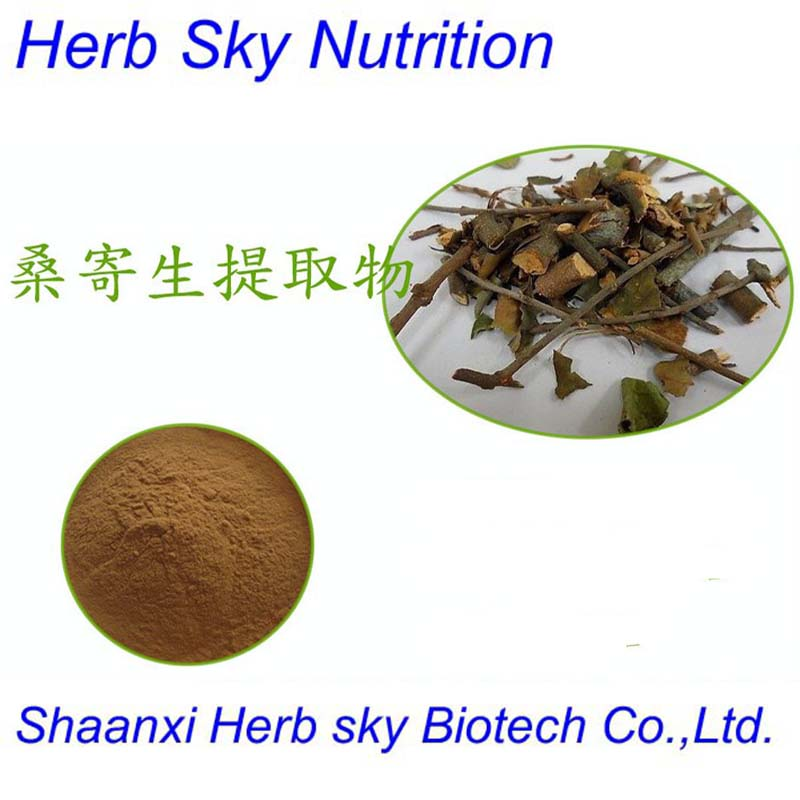 Traditional Chinese Medicine 10:1 Taxillus chinensis Danser, loranthus parasiticus, Mulberry Mistletoe Stem Extract