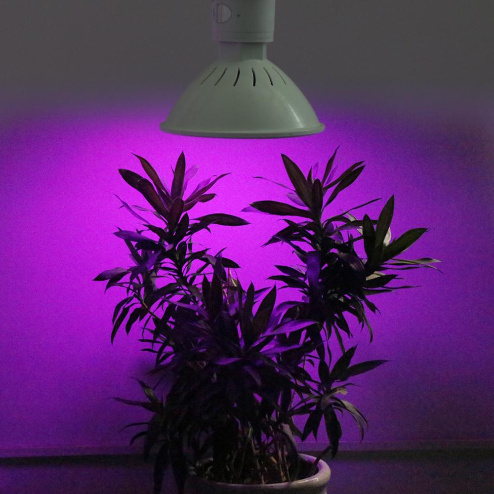 10pcs lot hot sale 20w smd3528 e27 led grow light for. Black Bedroom Furniture Sets. Home Design Ideas