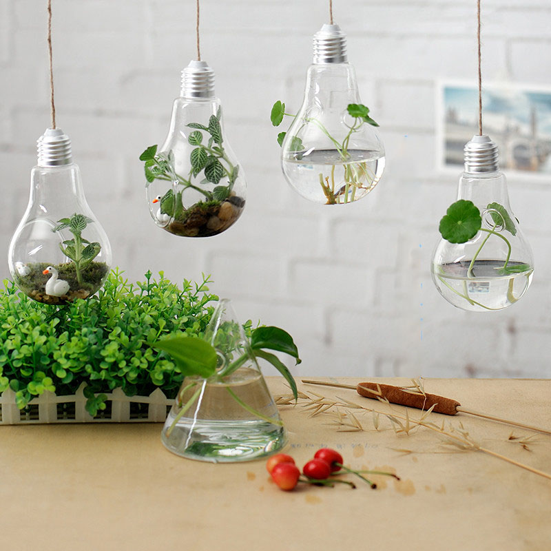 Design moderno vaso acquista a poco prezzo design moderno for Piante a poco prezzo