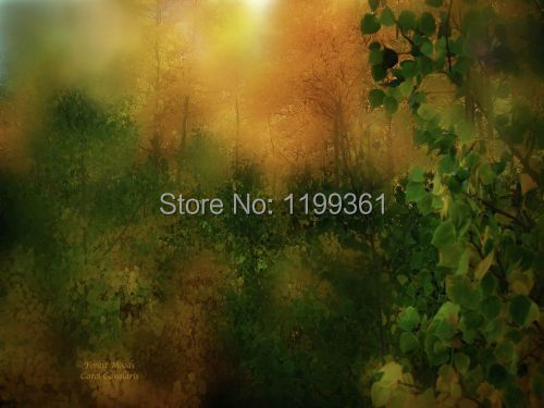 MY Printed Oil Painting Modern Wall Art Home Decoration Canvas Prints Picture No Frame Impression Forest Moods(China (Mainland))