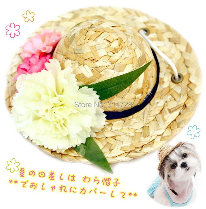 Свежие конфеты цветок ПЭТ strawhat собак и кошек