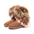 Furry Winter Snow Boots Ugs Women Fashion Tassels Fur Ankle Boot for Women Warm Casual