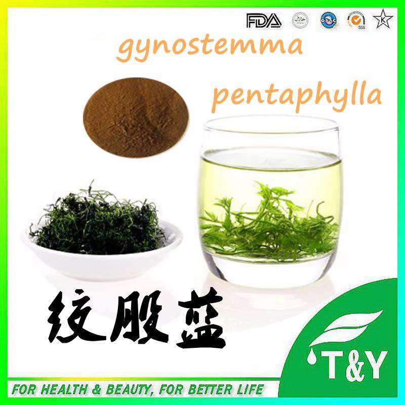 Natural Gynostemma P.E , Gynostemma Pentaphylla Extract,Gynostemma