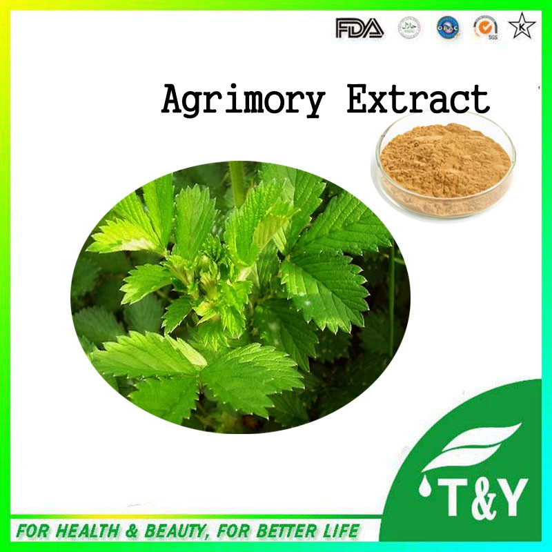 100% Natural Agrimory Extract/Hairyvein Agrimonia Herb Extract 700g/lot