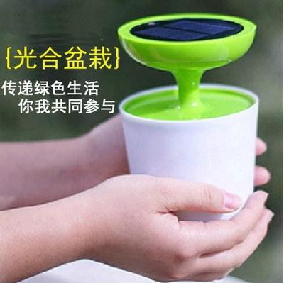 1W power LED light potting solar lamp LED night light lamp gift birthday gift(China (Mainland))