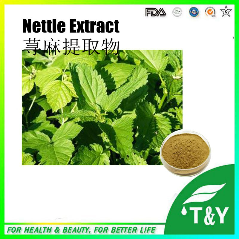 Factory Supply 100% Pure Natural Nettle Root Extract 600g/lot<br><br>Aliexpress