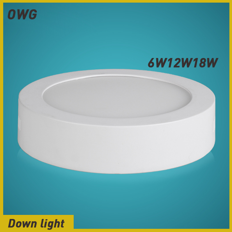 Downlight 6W/12W/18W/ White/Warm White LED ceiling light AC85-265V - ZEROGEM Lighting Co., LTD store