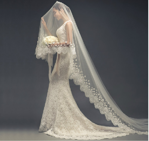 2015 wedding dress bridal veil wedding accessories long for Wedding dresses and veils
