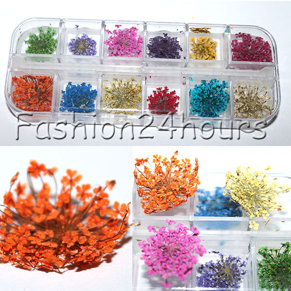 2016 New Arrival Hot 12 Colors Real Dry Dried Flowers Nail Art Decorations Nail Jewelry Free Shipping