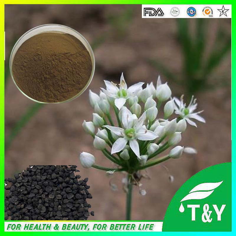 Natural Tuber Onion Seed Extract Powder Leek Seed Extract Chinese Chive Seed<br><br>Aliexpress
