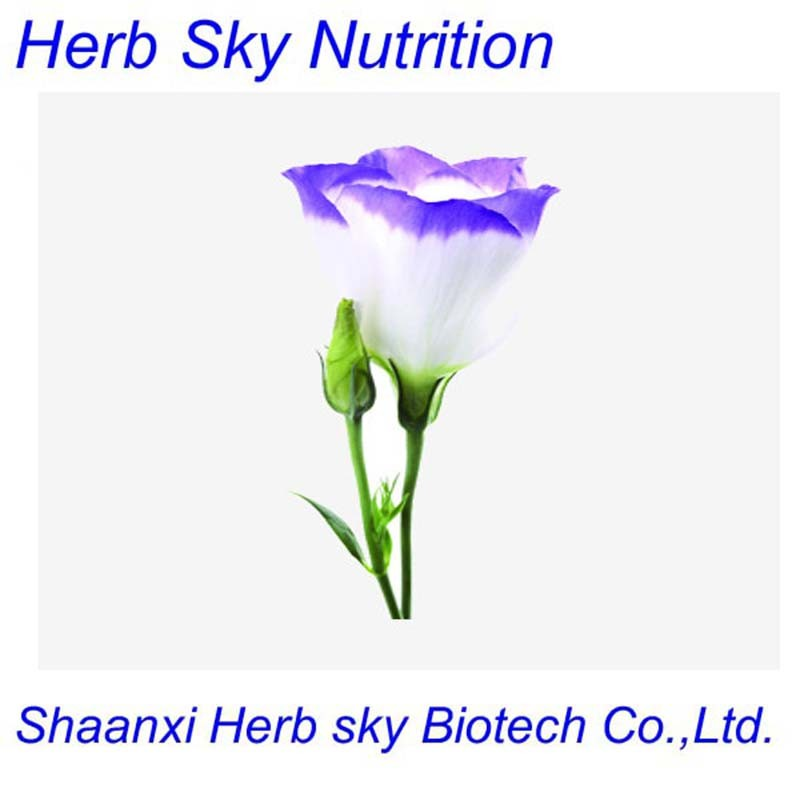 Chinese traditional herbal balloon flower extract balloon flower root extract Platycodon Grandiflorum Root Extract 100g/lot<br><br>Aliexpress