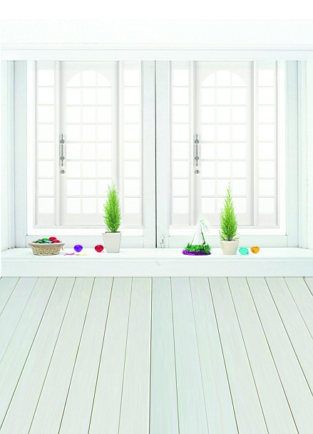 215*150cm backgrounds Vast interior house large windows as simple and clean si photography photo LK 1180(China (Mainland))