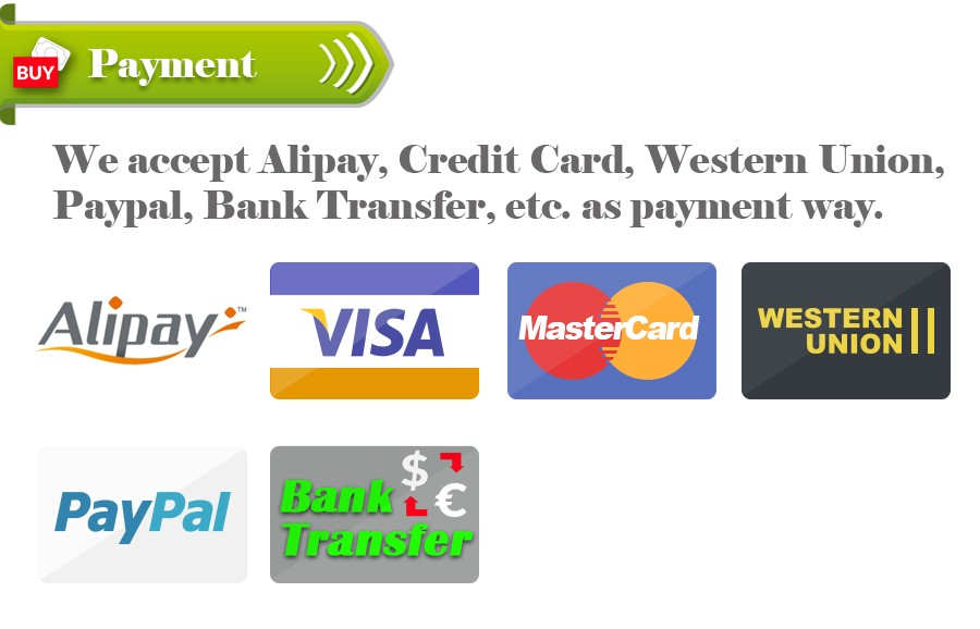 2 payment