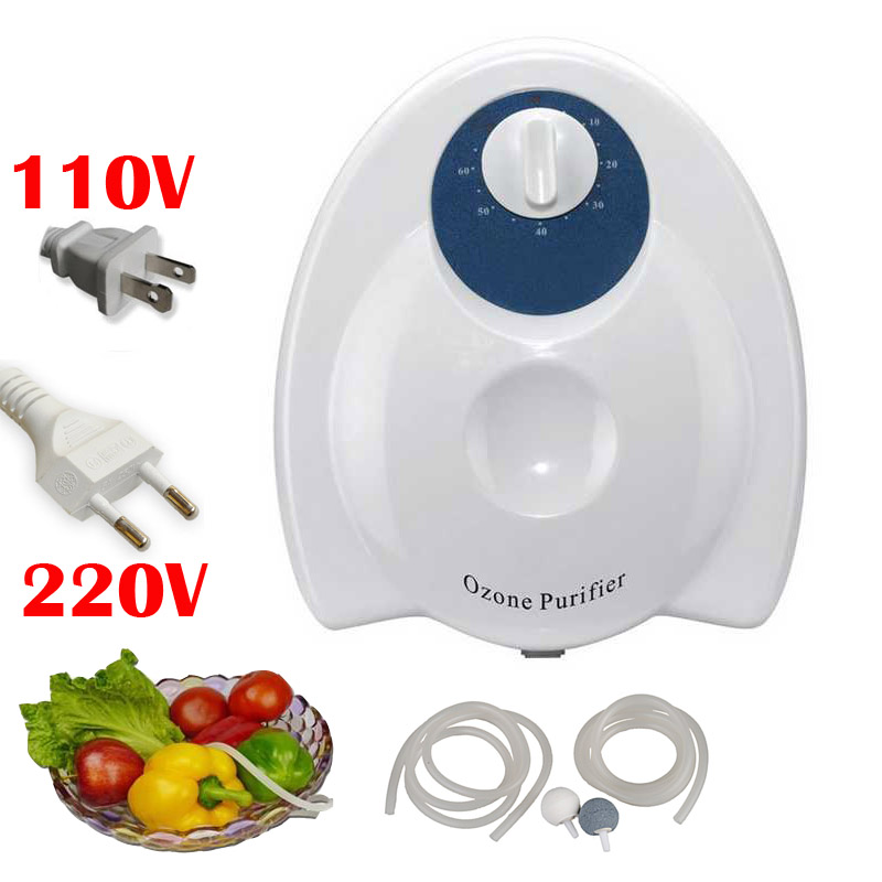 portable Air Ozone Generator Water Fruit Vegetables Food Sterilizer Ozonizer Purifier Purification 400mg/h 220V 110V Skin - Lisa 1st Store store