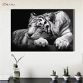 Hotselling Tiger Oil Painting Cuadros Quadros Printed Wall Art Canvas Home Decoracion