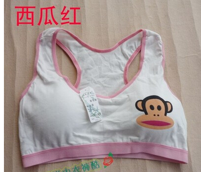 cotton young girl training bra underwear student pure vest sports - SOCOOL HOME store