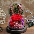 The Beautiful Glass Cover Fresh Preserved Rose Flower Immortal Colorful Roses For Wedding Home Party Decoration