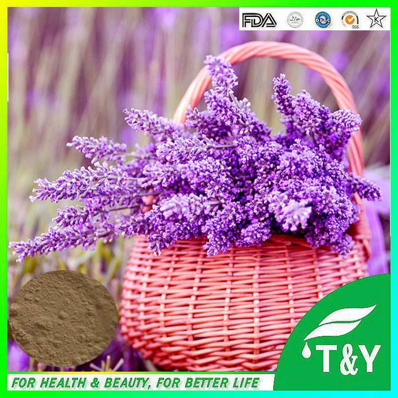 Manufacturer Supply Lavender Flower Extract, Dried Lavender Flower <br><br>Aliexpress