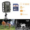 Free shipping RD1001 12MP PIR Night Vision IR Game Hunting Trail Security HD Camera Cam DVR
