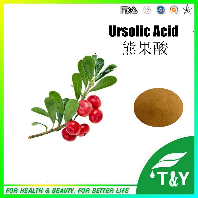 High Quality Alpha Arbutin/Bearberry Extract/acetylursolic acid 200g/lot