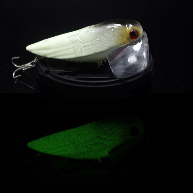 рыб цикада приманка