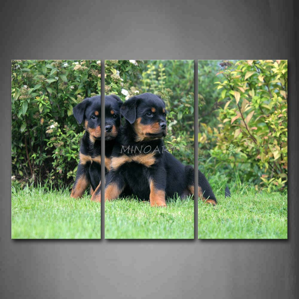 3 Piece Wall Art Painting Two Rottweilers Sit On Grassland Tree Print On Canvas The Picture Animal 4 Pictures(China (Mainland))