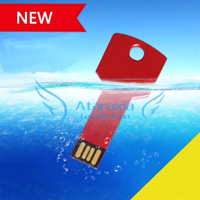 Waterproof metal key u disk customized logo printed personalized gift USB PenDrive 4GB 8GB USB Flash Drive 16G 32G 64G Pen Drive(China (Mainland))