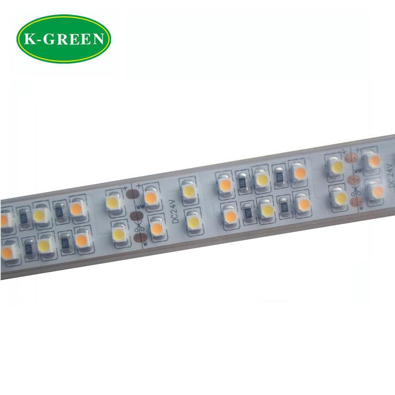 5mX Supper brightness 3528SMD LED strip light DC24V input 240LED/m Cool White+Warm White CCT adjustable free shipping(China (Mainland))