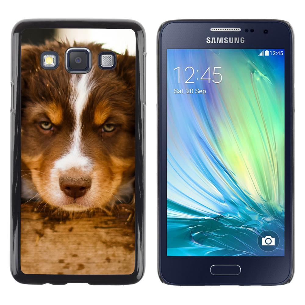 Snap On Hard PC Back Shell Case For Samsung Galaxy A3 SM-A300 -Siberian Husky Alaskan Malamute Puppy(A3-3005222)(China (Mainland))